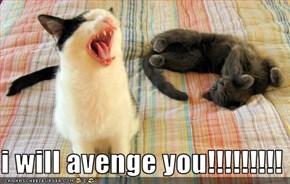 i will avenge you!!!!!!!!!