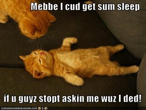 Mebbe I cud get sum sleep     if u guyz stopt askin me wuz I ded!