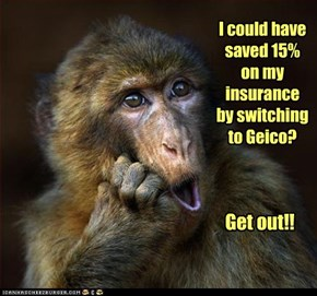I could have saved 15% on my insurance by switching to Geico?