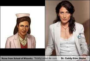 Nurse from School of Wizardry Totally Looks Like Dr. Cuddy from House