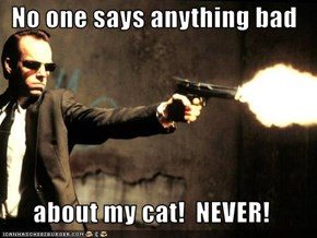 No one says anything bad  about my cat!  NEVER!