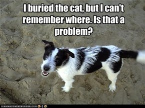 I buried the cat, but I can't remember where. Is that a problem?