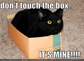 don't touch the box...  IT'S MINE!!!!