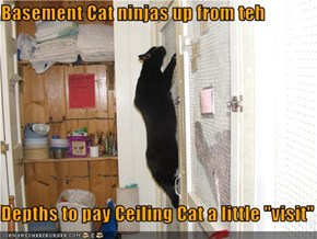 "Basement Cat ninjas up from teh   Depths to pay Ceiling Cat a little ""visit"""