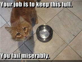 Your job is to keep this full.  You fail miserably.
