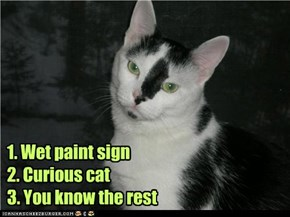 1. Wet paint sign 2. Curious cat 3. You know the rest