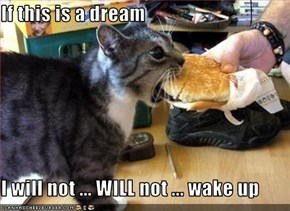 If this is a dream  I will not ... WILL not ... wake up