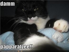 damm  papparatzee!!