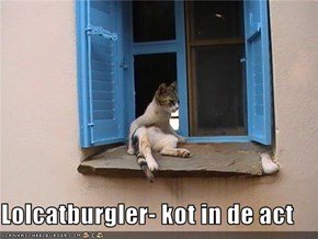 Lolcatburgler- kot in de act