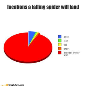 locations a falling spider will land