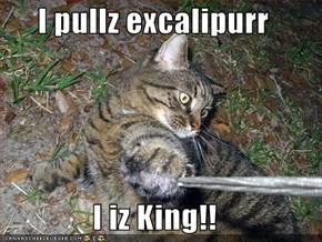 I pullz excalipurr  I iz King!!