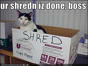 ur shredn iz done, boss