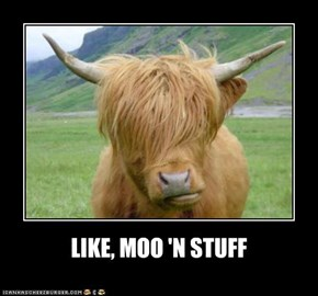 LIKE, MOO 'N STUFF