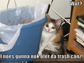Wut?  I noes gunna nok ofer da trash canz!