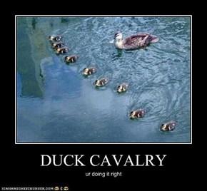 DUCK CAVALRY