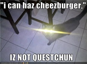 """i can haz cheezburger,""  IZ NOT QUESTCHUN"