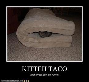KITTEH TACO