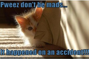 Pweez don't be mads...  It happened on an accident!!!