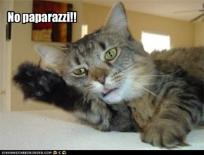 No paparazzi!!