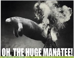 FACT: Manatees Are Highly Combustible