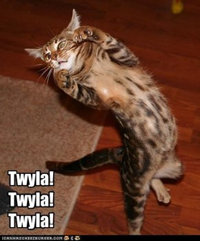 Modern Dance Kitteh Loves Twyla