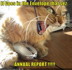 It Goes in the Envelope that sez:  ANNUAL REPORT !!!!!