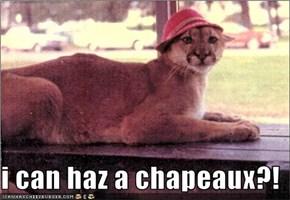 i can haz a chapeaux?!