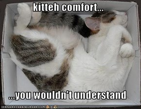 kitteh comfort...  ...you wouldn't understand
