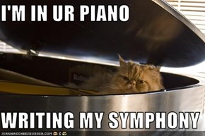 I'M IN UR PIANO  WRITING MY SYMPHONY