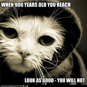 WHEN 900 YEARS OLD YOU REACH