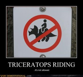 TRICERATOPS RIDING