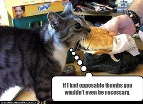 If I had opposable thumbs you wouldn't even be necessary.