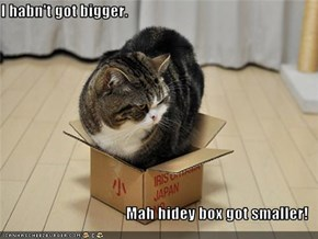 I habn't got bigger.  Mah hidey box got smaller!