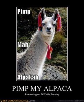 PIMP MY ALPACA