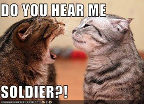 DO YOU HEAR ME  SOLDIER?!