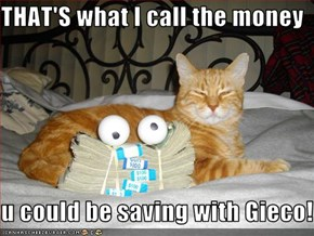 THAT'S what I call the money   u could be saving with Gieco!