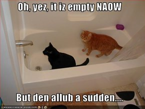 Oh, yez, it iz empty NAOW  But den allub a sudden....