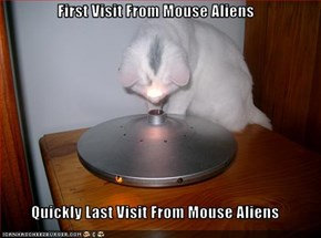 First Visit From Mouse Aliens  Quickly Last Visit From Mouse Aliens