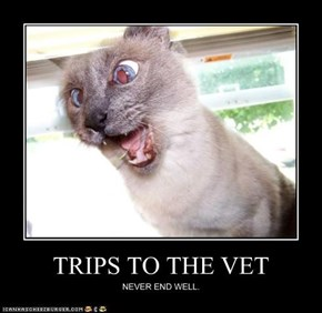 TRIPS TO THE VET