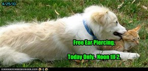 Free Ear Piercing.  Today Only.  Noon til 2.