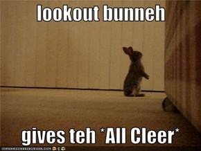 lookout bunneh     gives teh *All Cleer*