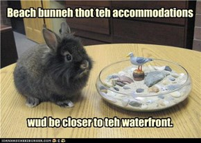 Beach bunneh thot teh accommodations         wud be closer to teh waterfront.