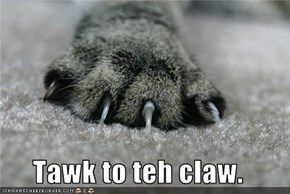 Tawk to teh claw.