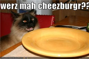 werz mah cheezburgr?????