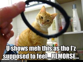That werd does nawt exist in kitteh's vocabulary.