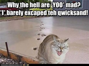 Why the hell are *YOO* mad? *I* barely excaped teh qwicksand!