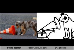 Pilone Boomer Totally Looks Like EMI Snoopy