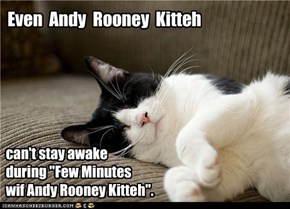 Even  Andy  Rooney  Kitteh
