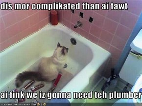 dis mor complikated than ai tawt  ai fink we iz gonna need teh plumber