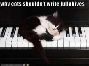 why cats shouldn't write lullabiyes